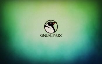 Come riconoscere la versione e la distribuzione di un sistema Linux