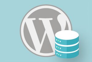 wp database recovery