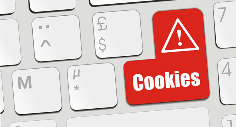 note legali di un e-commerce e cookies