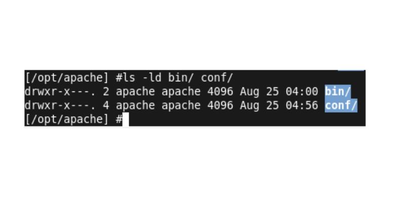 sicurezza web server apache e permessi directory