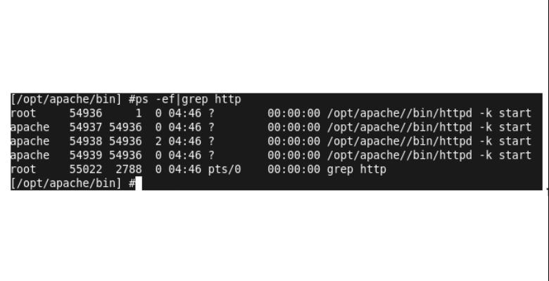 sicurezza web server apache e verifica autorizzazioni